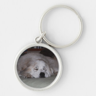 Sleeping Pyr Silver-Colored Round Keychain