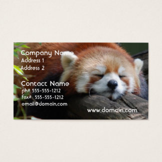 Sleeping Red Panda  Business Card