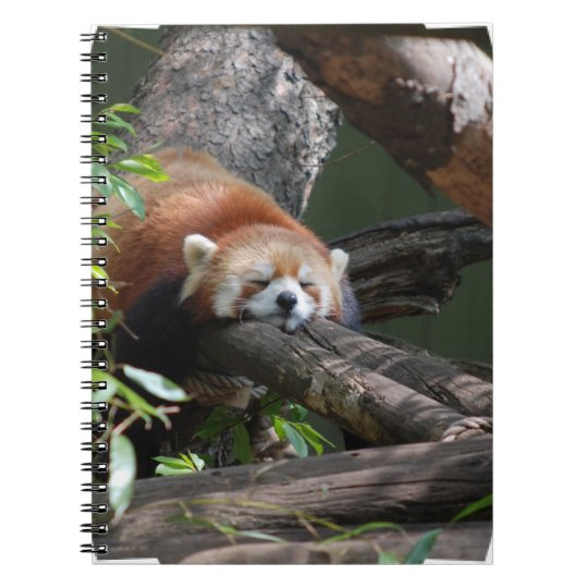 Sleeping Red Panda Notebook