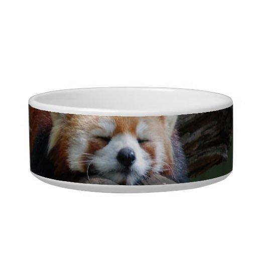Sleeping Red Panda Pet Bowl Cat Food Bowls