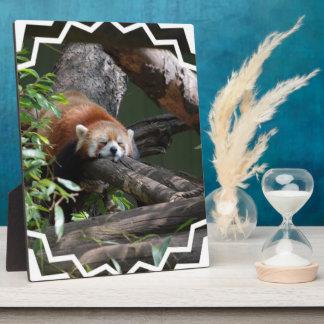 Sleeping Red Panda Plaque