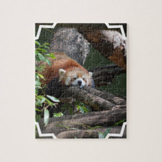 Sleeping Red Panda puzzle