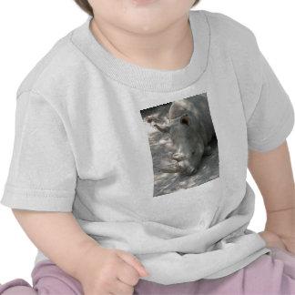 Sleeping Rhino head shot Tshirts