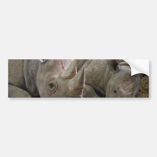 Sleeping Rhinos Bumper Stickers