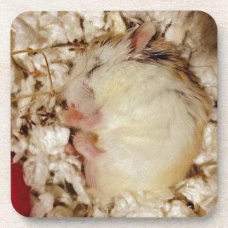 Sleeping Roborovski Hamster Beverage Coaster