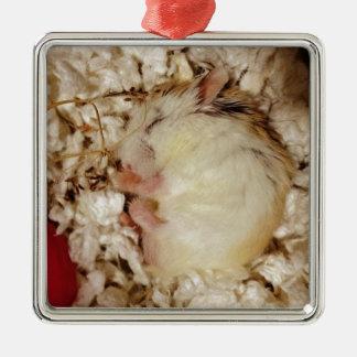 Sleeping Roborovski Hamster Ornaments