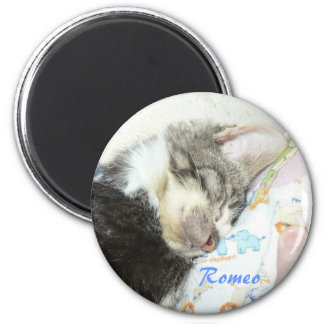 sleeping romeo magnet