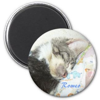 sleeping romeo magnet