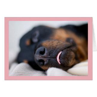 Sleeping Rottweiler Photo Card