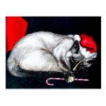 Sleeping Santa Claws Post Cards