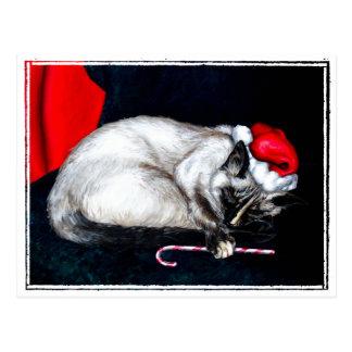 Sleeping Santa Claws Postcard