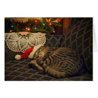 Sleeping Santa Daisy Kitty Cat Kitten Holiday Card
