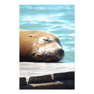 SLEEPING SEA LION STATIONERY