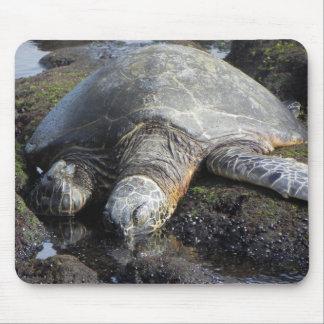 Sleeping Sea Turtle Mouse Pad