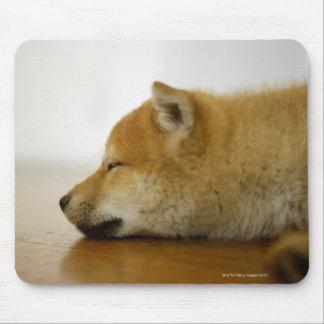 Sleeping Shiba-ken 3 Mouse Pad