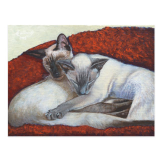 Sleeping Siamese Cat Art Post Cards