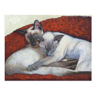 Sleeping Siamese Cat Art Postcard