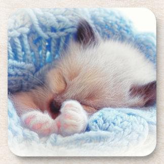 Sleeping Siamese Kitten Paws Coasters