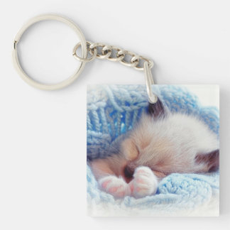 Sleeping Siamese Kitten Paws Keychain