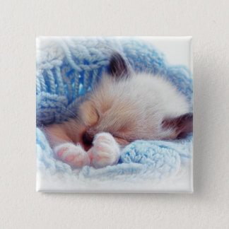 Sleeping Siamese Kitten Paws Pinback Button