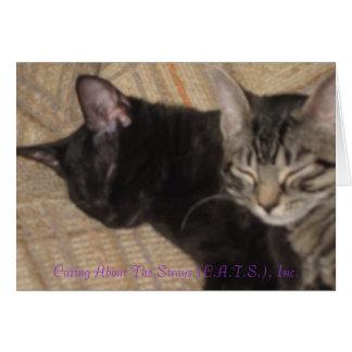 Sleeping Sisters Card