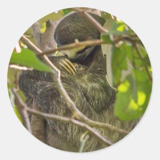sleeping sloth classic round sticker