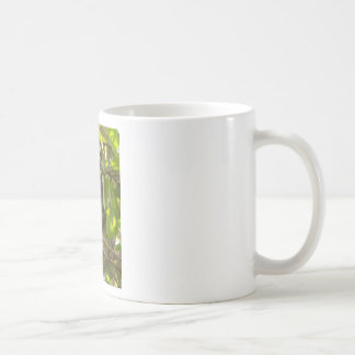 sleeping sloth coffee mug