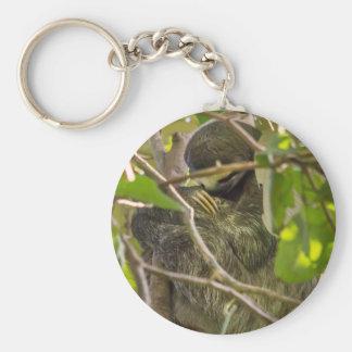 sleeping sloth keychain
