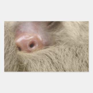 sleeping sloth rectangular sticker