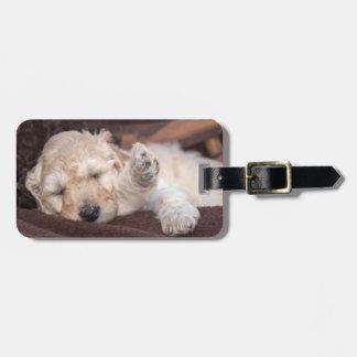 Sleeping Standard Poodle puppy Bag Tag