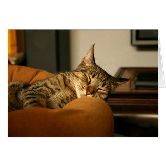 Sleeping Stitch the Cat Card
