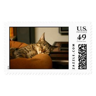 Sleeping Stitch the Cat Postage Stamp