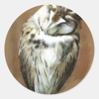 Sleeping Striped owl Classic Round Sticker