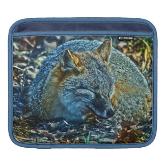 Sleeping Swift Fox Wildlife Photo Art Sleeve