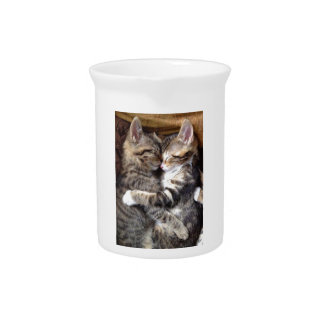Sleeping Tabby Cat Buddies Beverage Pitchers