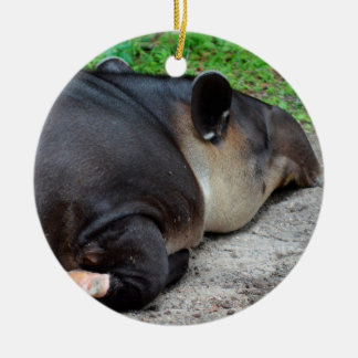 sleeping tapir animal from back zoo critter wild ceramic ornament