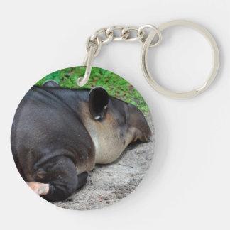 sleeping tapir animal from back zoo critter wild keychain