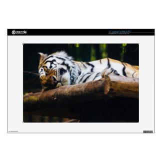 Sleeping Tiger Big Cat Wild Animal Photography Laptop Decals