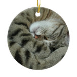 Sleeping Tiger-Cat Christmas Ornaments