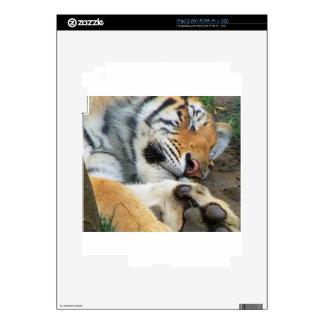 Sleeping Tiger iPad 2 Decal