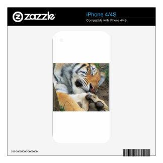 Sleeping Tiger iPhone 4S Decal