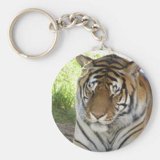 Sleeping tiger keychain