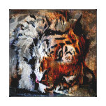 Sleeping Tiger Stretched Canvas Print