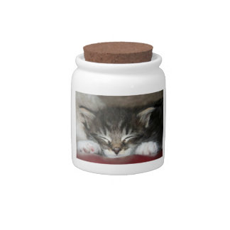 Sleeping Tiger Striped Kitten Candy Jar