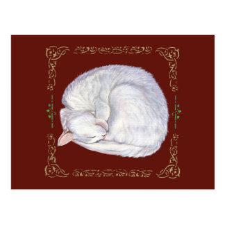 Sleeping Treasure White Cat Postcard