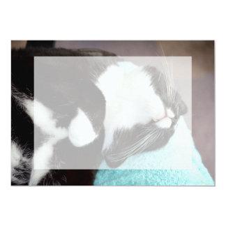 sleeping tuxedo cat chin view kitty image 5x7 paper invitation card