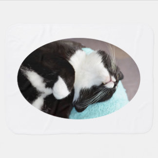 sleeping tuxedo cat chin view kitty image stroller blanket