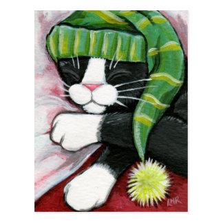 Sleeping Tuxedo Cat with Nightcap Art Postcard