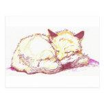 sleeping vixen post cards