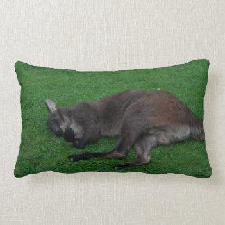 Sleeping Wallaby Pillow